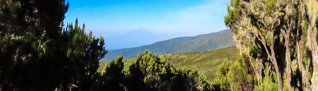 marangu route day 2